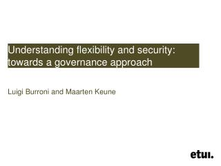 Understanding flexibility and security: towards a governance approach