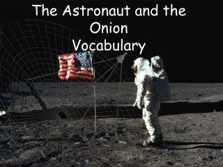 The Astronaut and the Onion Vocabulary
