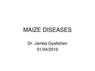 MAIZE DISEASES