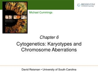 Cytogenetics: Karyotypes and Chromosome Aberrations