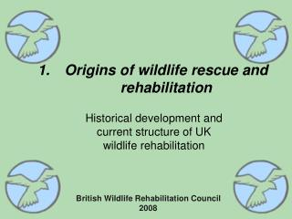 Origins of wildlife rescue and rehabilitation