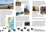 Download - GTZ Wildlife Programme in Tanzania