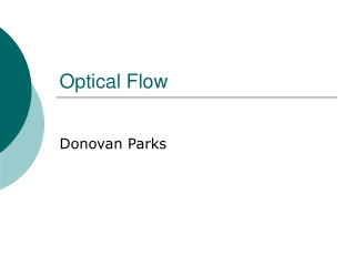Optical Flow and Motion Detection