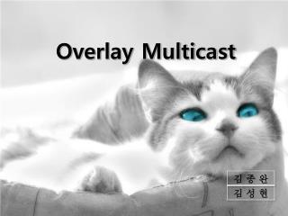 Overlay Multicast