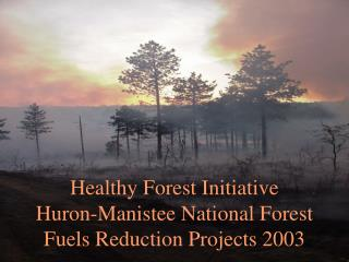 Healthy Forest Initiative Huron-Manistee National Forest Fuels Reduction Projects 2003