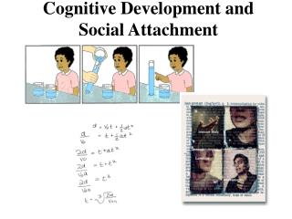 Cognitive Development and Social Attachment
