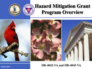 Hazard Mitigation Grant Program Overview
