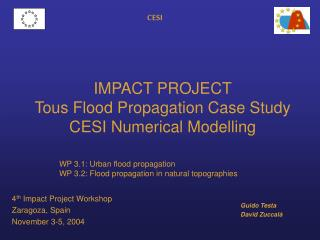 IMPACT PROJECT Tous Flood Propagation Case Study CESI Numerical Modelling