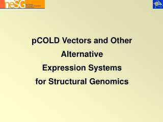 pCOLD Vectors and Other Alternative Expression Systems for Structural Genomics