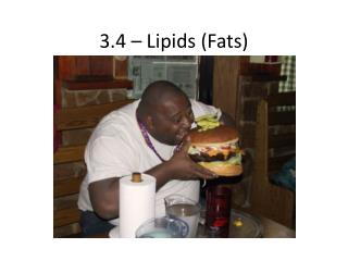 3.4 – Lipids (Fats)