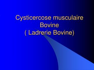 Cysticercose musculaire Bovine ( Ladrerie Bovine)