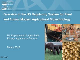 Overview of the US Regulatory System for  Plant and Animal Modern  Agricultural Biotechnology