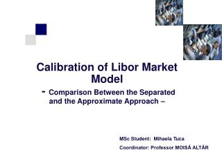 Calibration of Libor Market Model  -  Comparison Between the Separated and the Approximate Approach –