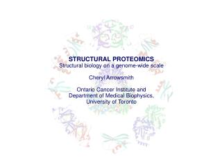 STRUCTURAL PROTEOMICS Structural biology on a genome-wide scale Cheryl Arrowsmith