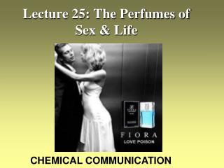Lecture 25: The Perfumes of Sex & Life