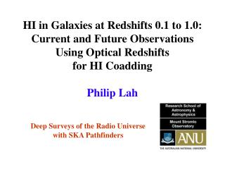 Deep Surveys of the Radio Universe  with SKA Pathfinders