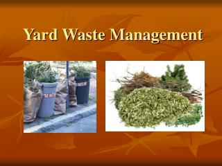 Yard Waste Management