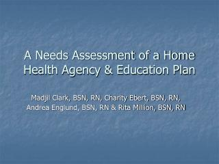 A Needs Assessment of a Home Health Agency & Education Plan