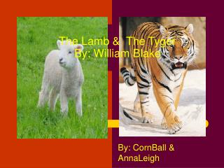 The Lamb &  The Tyger By: William Blake