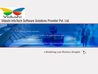Vidushi Infotech Software Solutions Provider Pvt. Ltd.