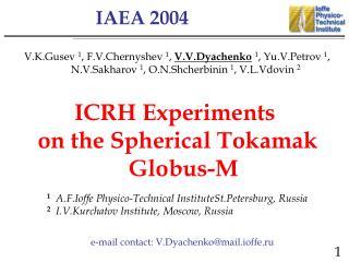 IAEA 2004