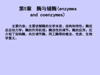 第 5 章  酶与辅酶 (enzymes and coenzymes)