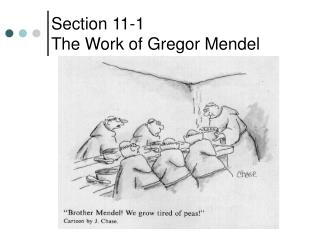 Section 11-1 The Work of Gregor Mendel