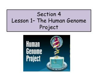 Section 4 Lesson  1 – The Human Genome Project