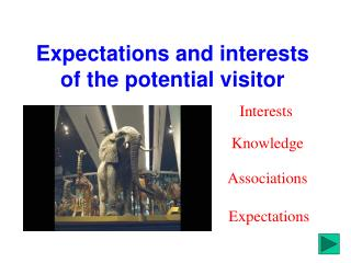 Expectations and interests of the potential visitor