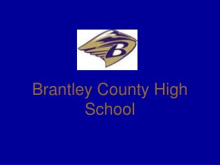 Brantley County High School