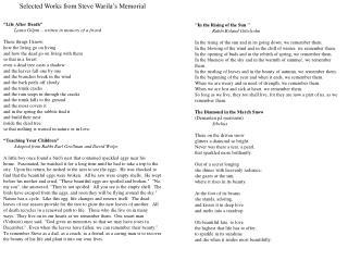 Selected Works from Steve Warila's Memorial