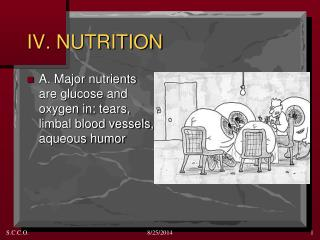 IV. NUTRITION