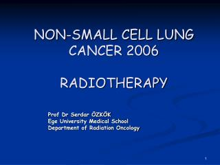 NON-SMALL CELL LUNG CANCER 2006  RADIOTHERAPY