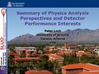 Summary of Physics Analysis Perspectives and Detector Performance Interests