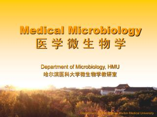 Department of Microbiology, Harbin Medical University
