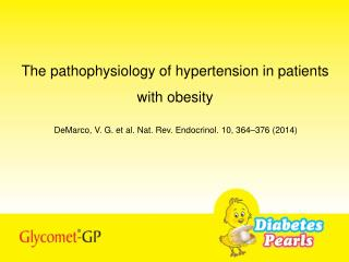The pathophysiology of hypertension in patients with obesity
