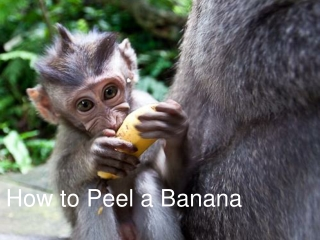 How To Peel a Banana