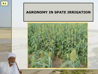 AGRONOMY IN SPATE IRRIGATION