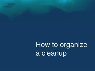 How to organize a cleanup
