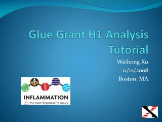 Glue Grant H1 Analysis Tutorial