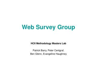 Web Survey Group