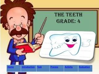 The teeth Grade: 4