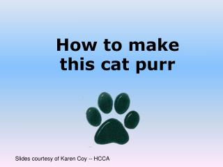How to make  this cat purr