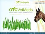 Need of Joint health supplements for Horses