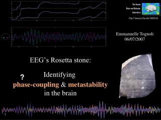 EEG's Rosetta stone: _ Identifying  _ phase-coupling  &  metastability in the brain