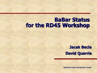 BaBar Status for the RD45 Workshop