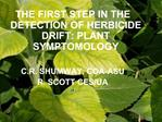 THE FIRST STEP IN THE DETECTION OF HERBICIDE DRIFT: PLANT SYMPTOMOLOGY  C.R. SHUMWAY, COA-ASU R. SCOTT CES