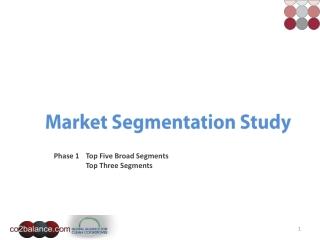 Market Segmentation Study