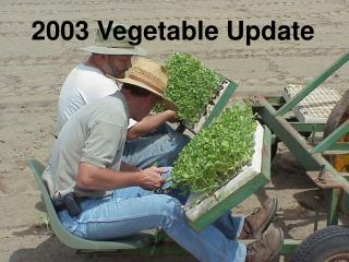 2003 Vegetable Update