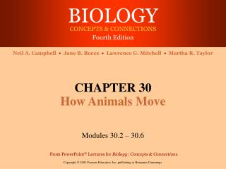 CHAPTER 30 How Animals Move